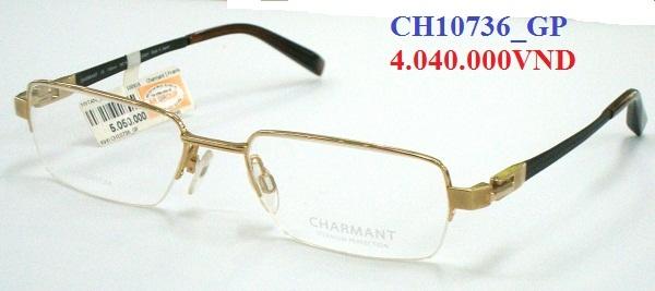 CH10736_GP